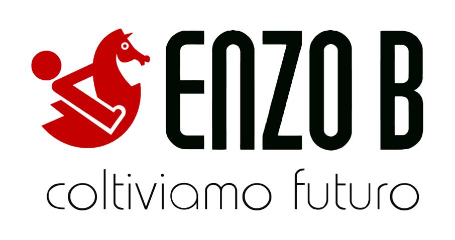 ENZO B