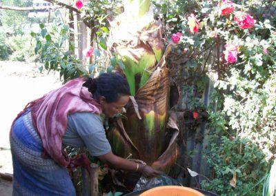 ETIOPIA – AGRICOLTURA SOSTENIBILE